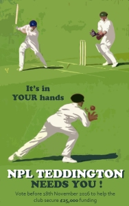 cricket_poster_npl_vote-copy